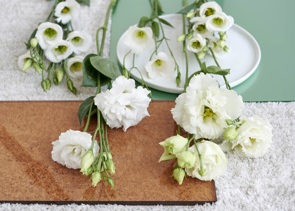 10_lisianthus_2020_4a_low
